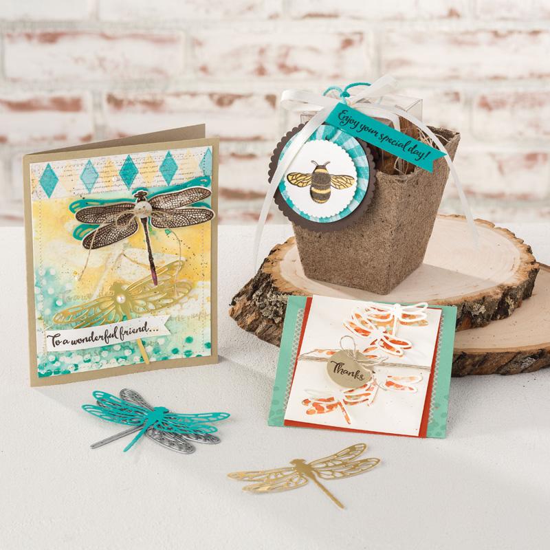 Dragonfly Dreams Samples