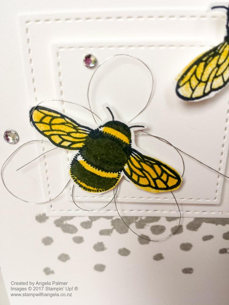 dragonfly dreams bee