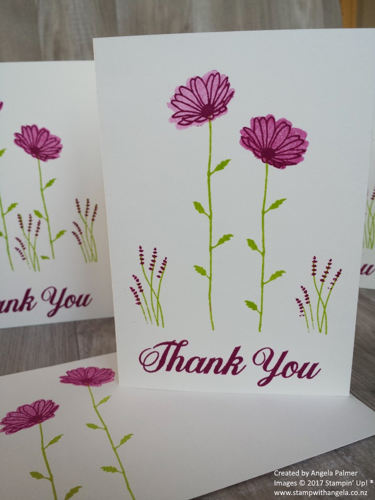 Daisy Delight Thank You In Color Note Cards